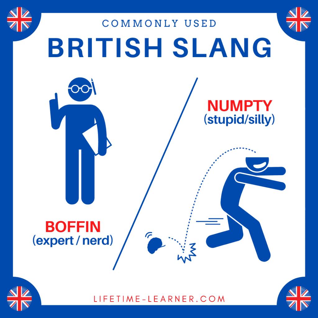 イギリス英語 スラング Boffin Numpty オタク